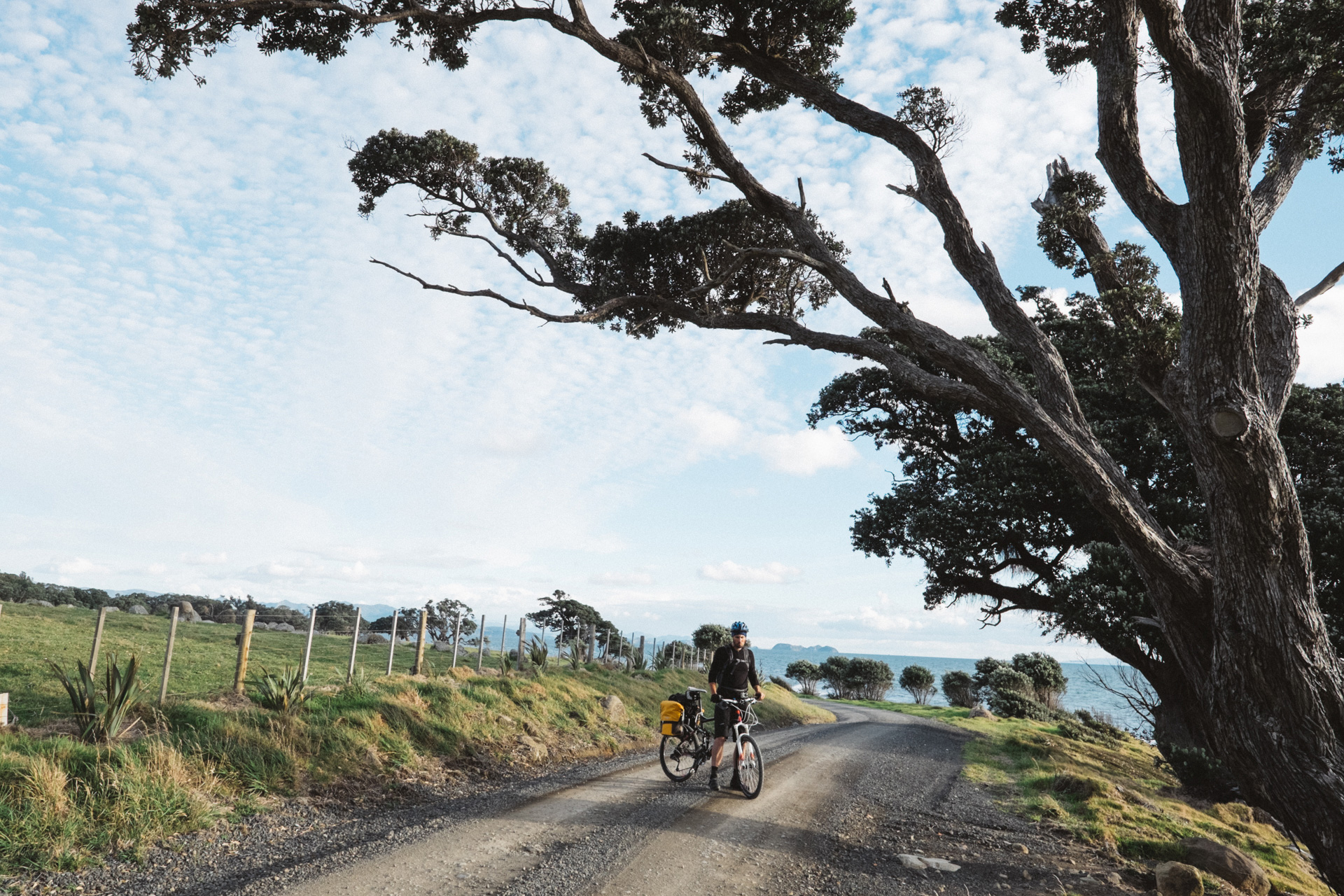 NewZealand-Bike-Tour-2014-55